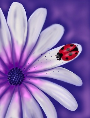 """Pollinating Protection"" Digital Print"